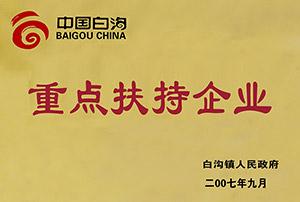2007年中国白沟重点扶持企业